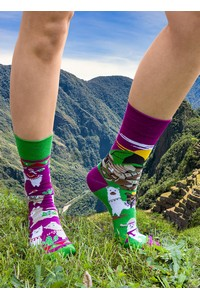 Socks spox sox lamy with machu picchu socks / damskie - all